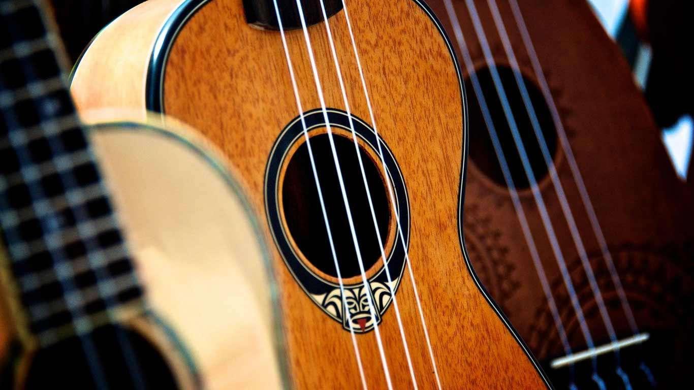 Ostali žičani instrumenti